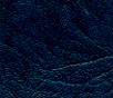 950-Med.Blue